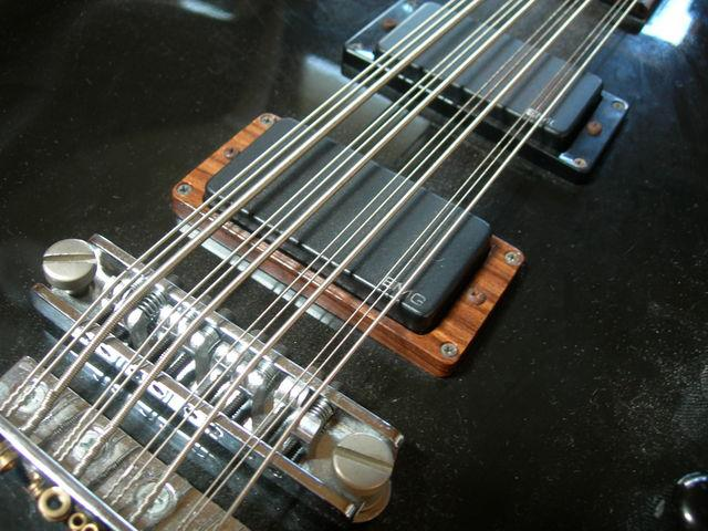 Twelve-string bass - Wikipedia