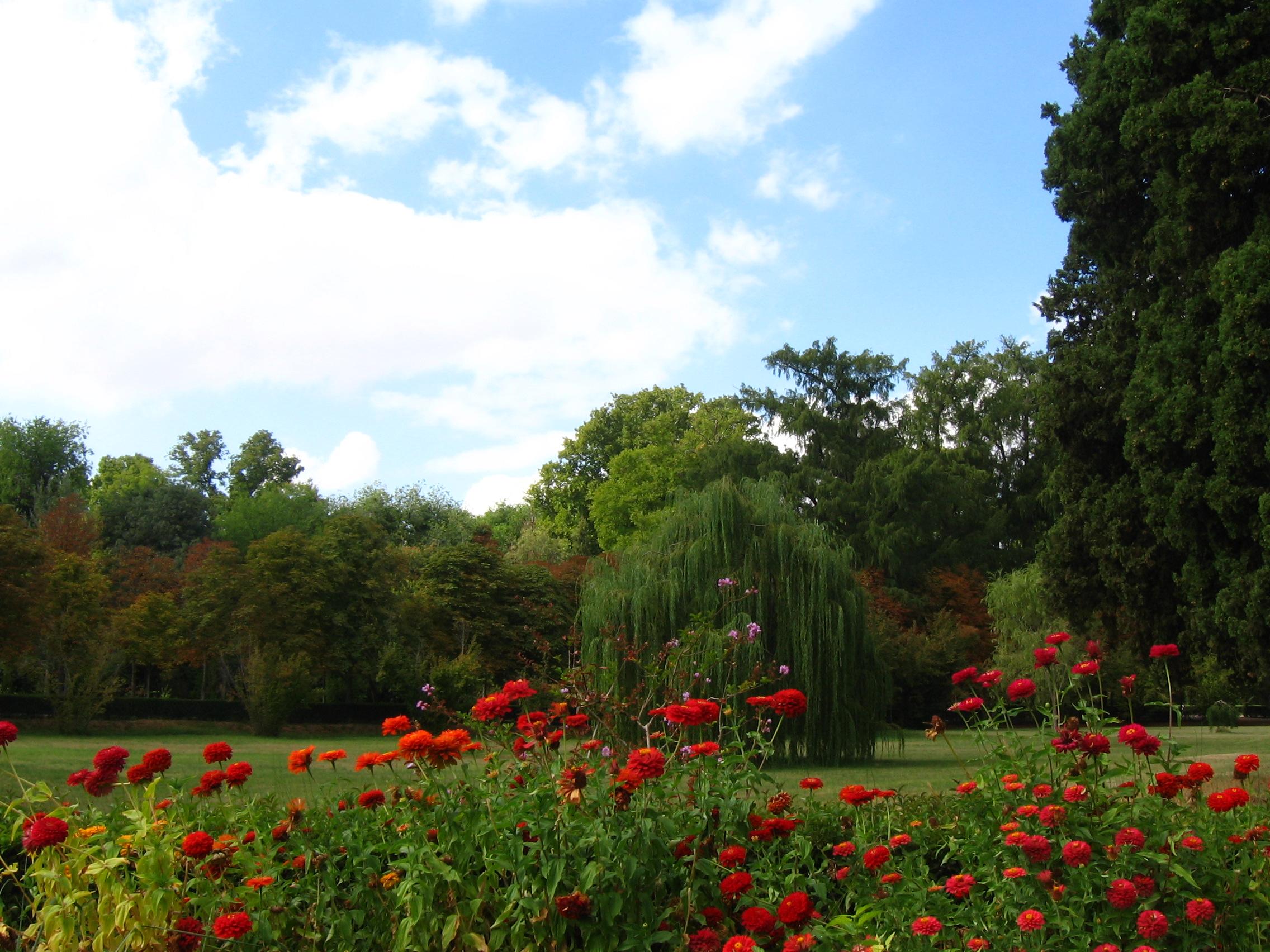 File aranjuez jardinprincipe casalabrador for Jardines de primavera