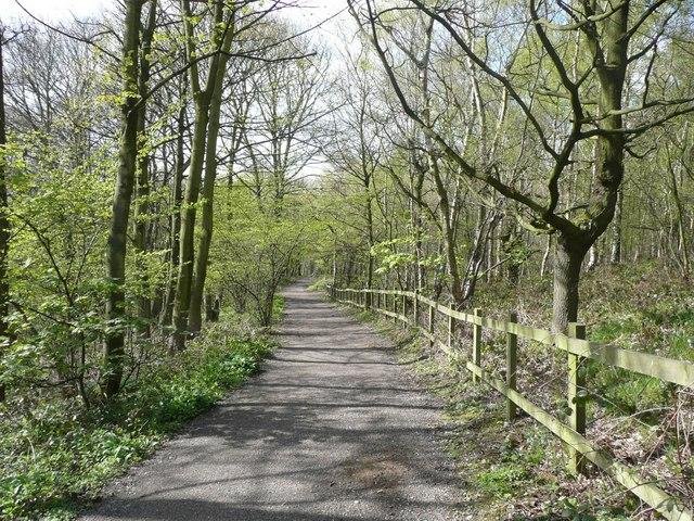 Bridleway to Middlestown, Midgley, Sitlington - geograph.org.uk - 796075