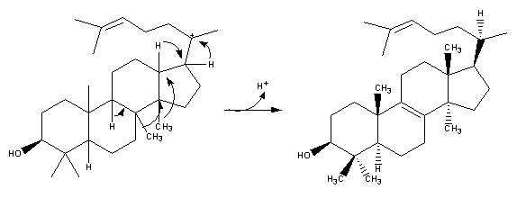 Resim:Cholesterol-Synthesis-Reaction13.png