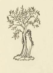 Elinor Darwin Irish born illustrator, engraver and portrait painter