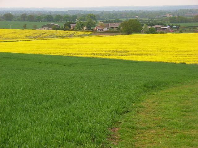 File:Farmland, Hawthorn Hill - geograph.org.uk - 799209.jpg