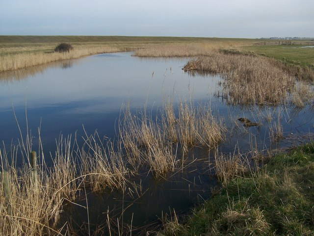 Fleet in St Mary's Marshes - geograph.org.uk - 1158032