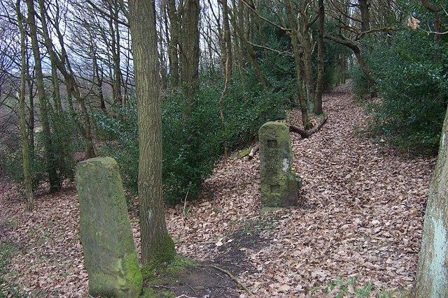 Gateposts in Elland Park Wood - geograph.org.uk - 702311