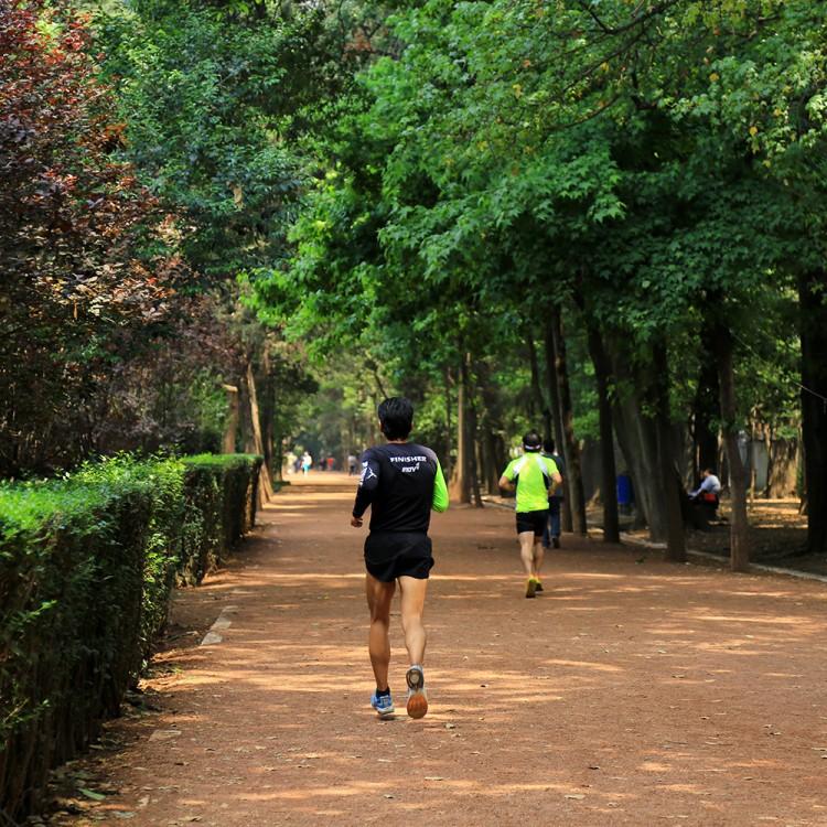 File gente corriendo viveros de coyoac wikimedia for Viveros coyoacan