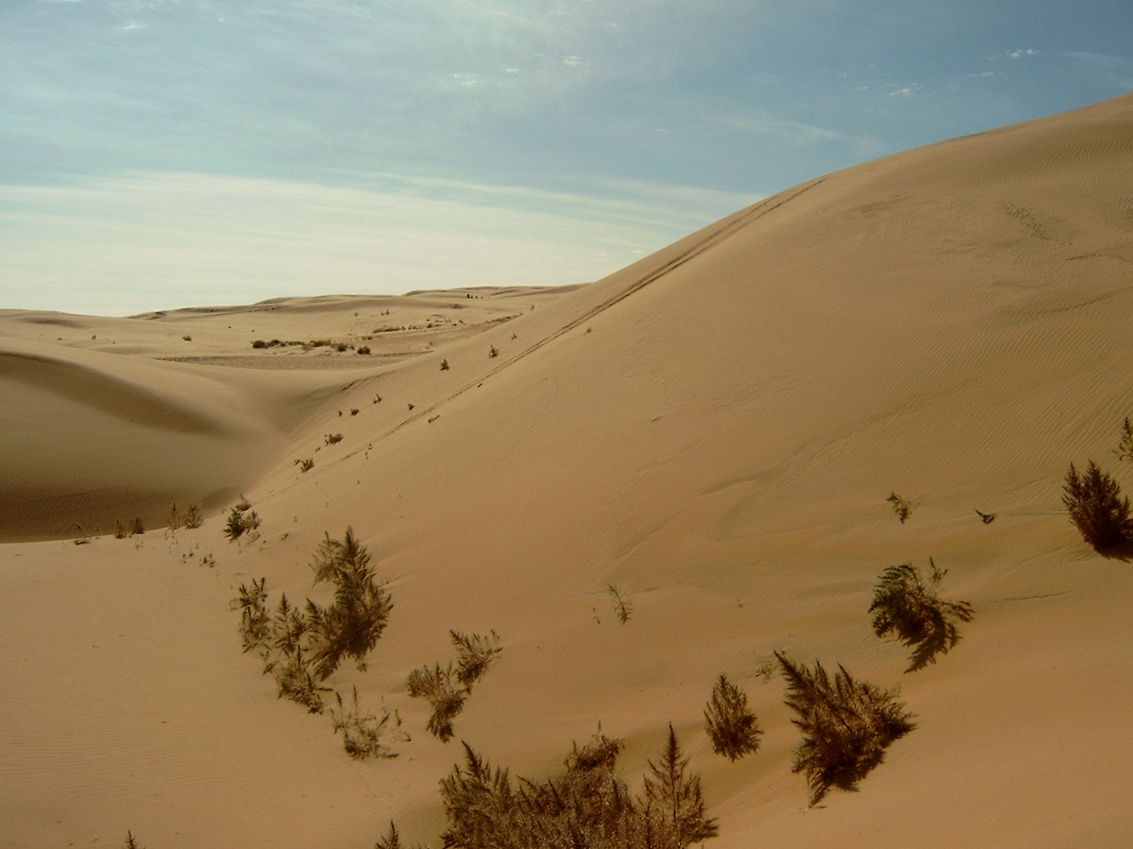 File:Gobi Desert.jpg - Wikipedia, the free encyclopedia