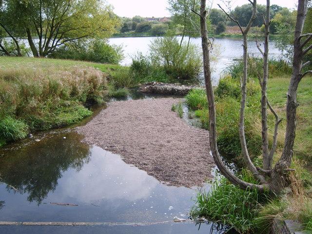 Kingshurst - Kingshurst Lake