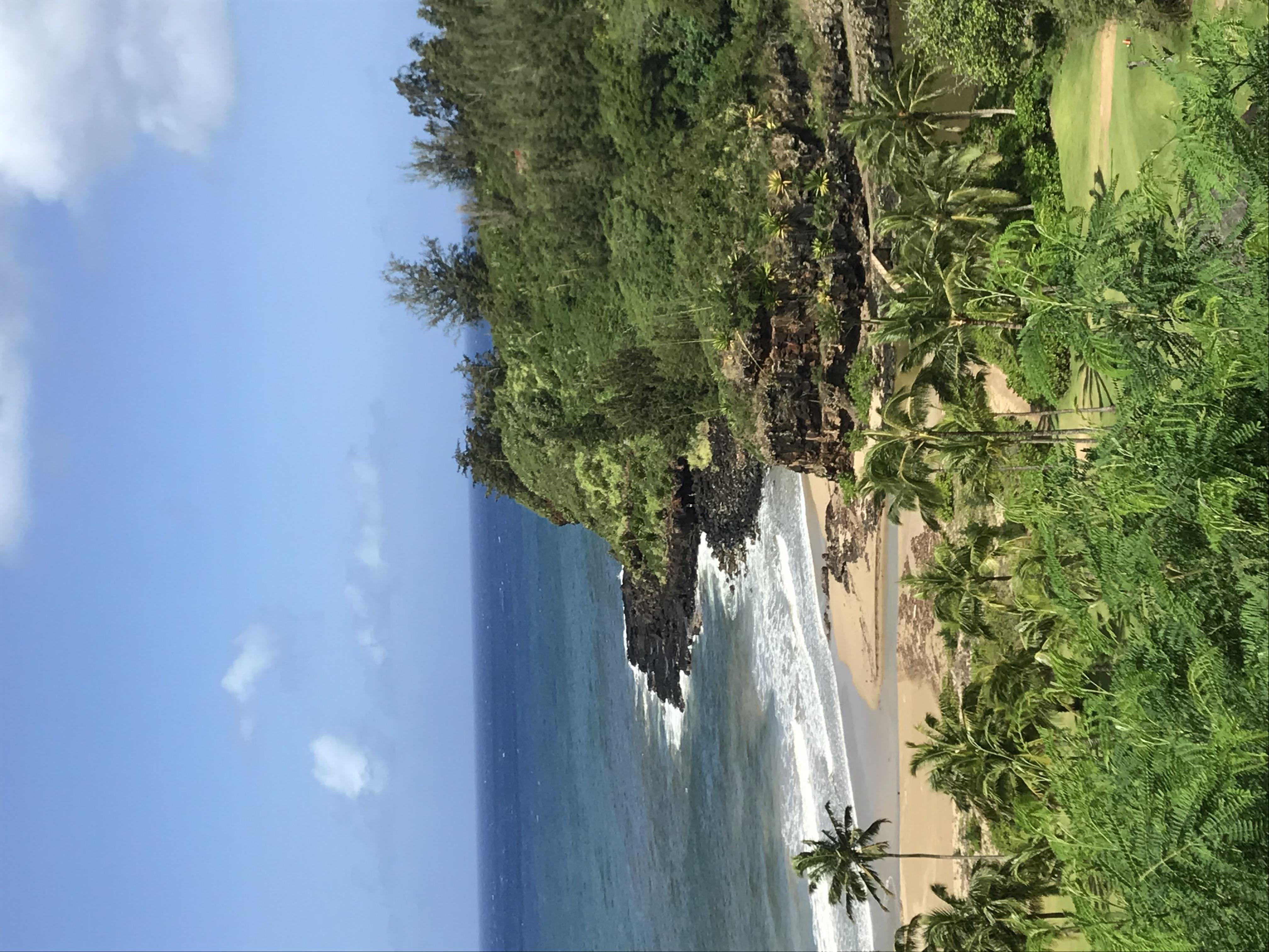 File national tropical botanical garden kauai - National tropical botanical garden kauai ...