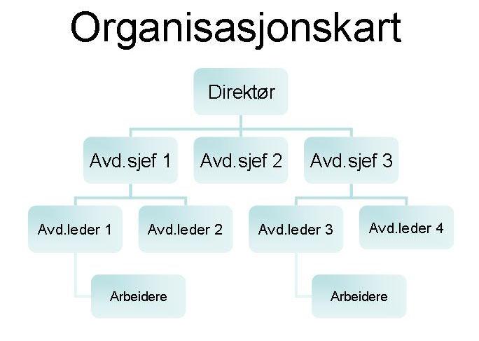 hva er et organisasjonskart