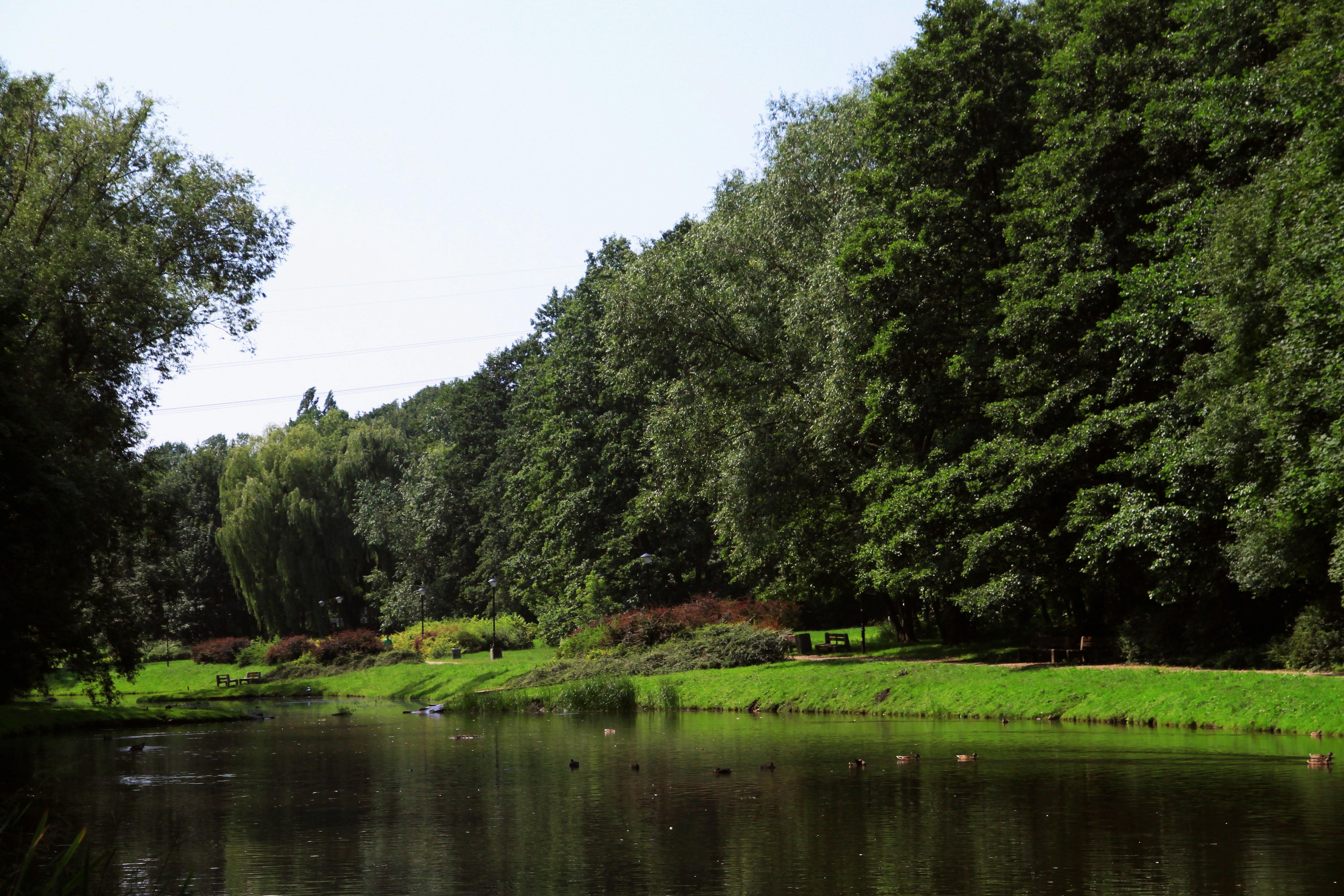 """Zespół przyrodniczo-krajobrazowy """"Arkadia"""""""