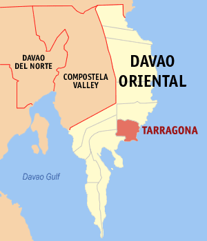 Map of Davao Oriental showing the location of Tarragona