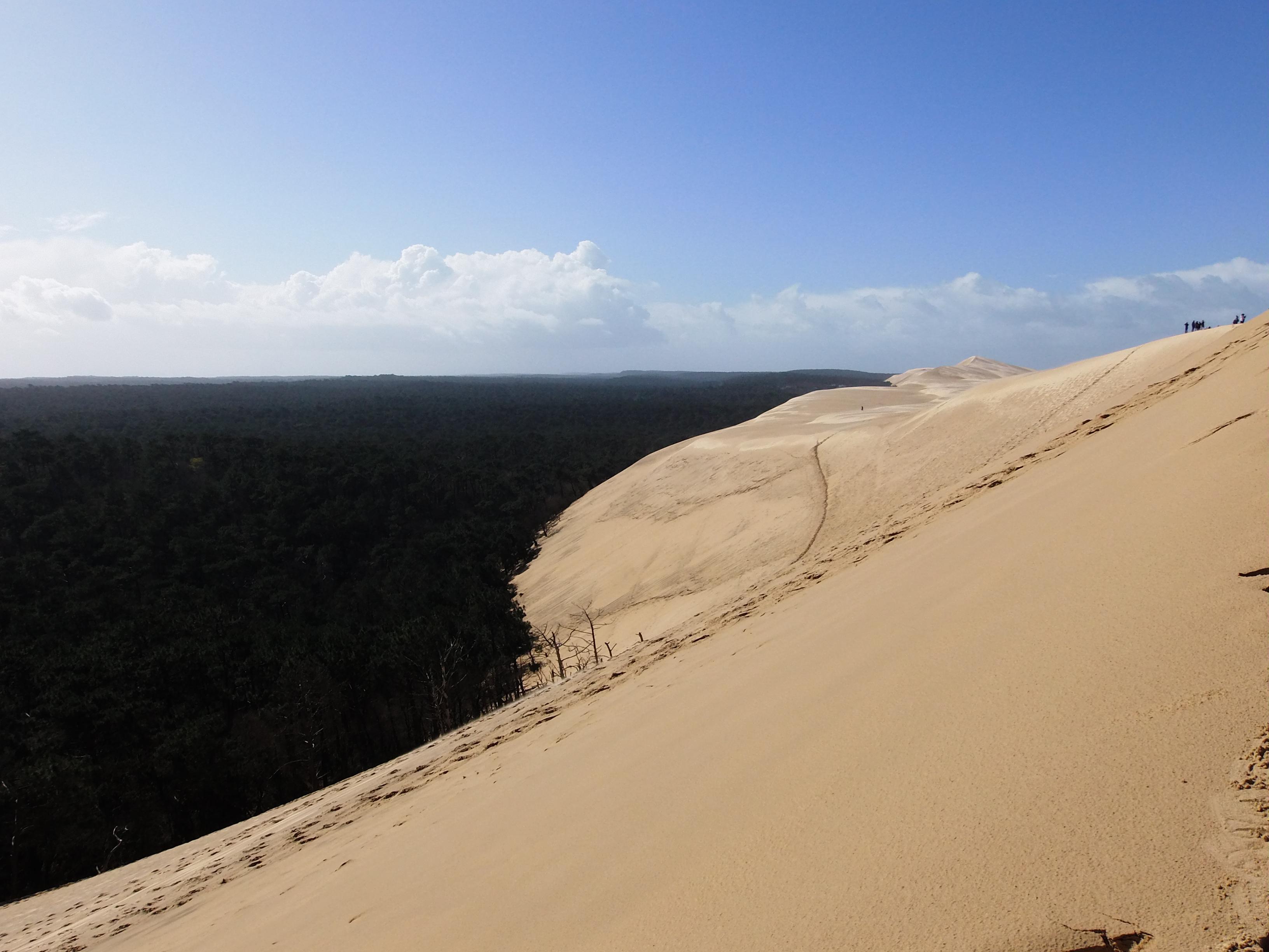 File pyla sur mer dune du pilat et landes de gascogne wikimed - Restaurant dune du pyla ...