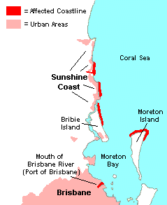 Online dating sites bay area in Brisbane
