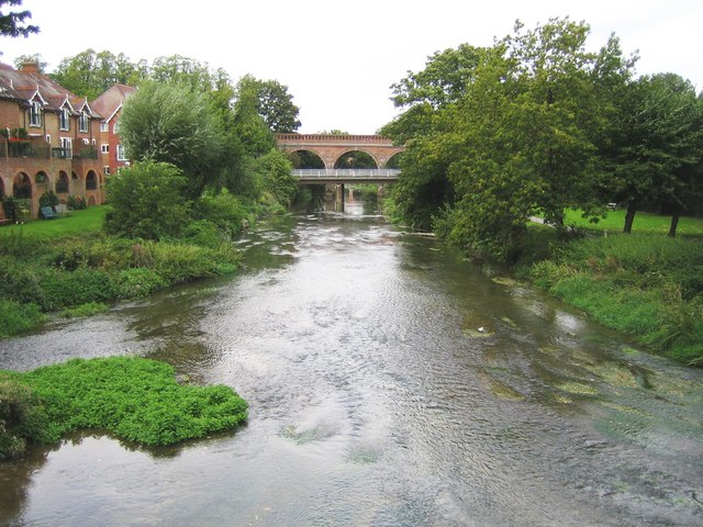 River Mole in Leatherhead - geograph.org.uk - 806182