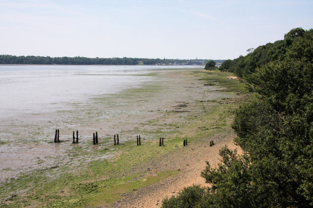 River Stour from the clifftop - geograph.org.uk - 843529