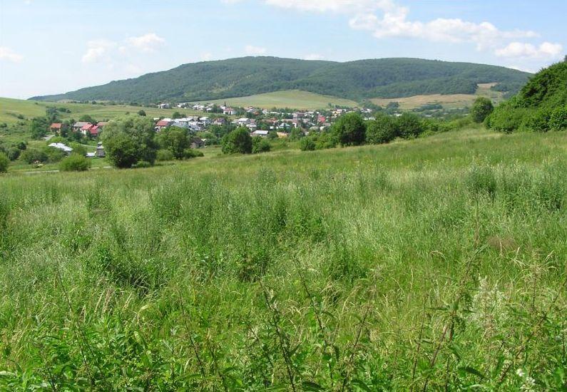 Rovné, Svidník District
