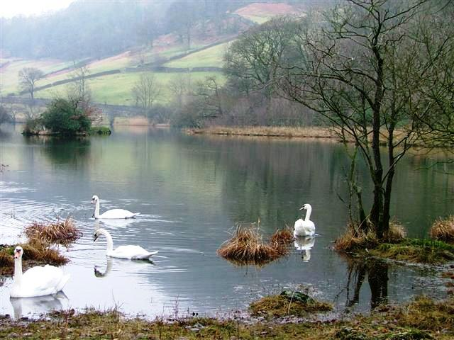 Eastern end of Rydal Water.