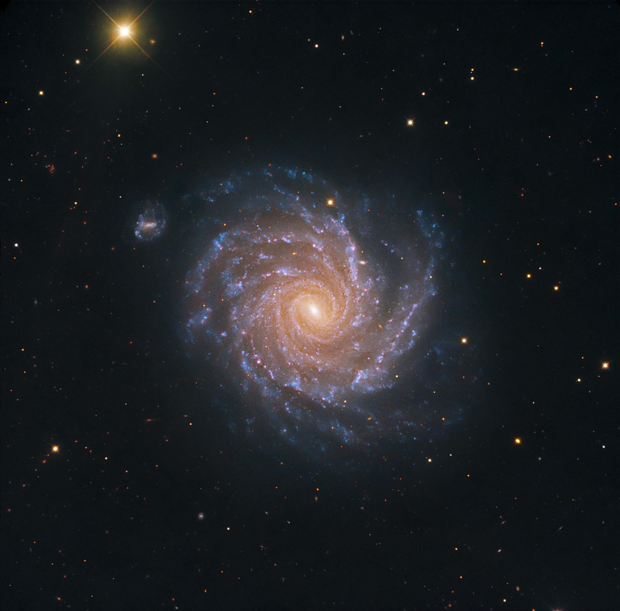 Sary:Spiral Galaxy NGC 1232.jpg