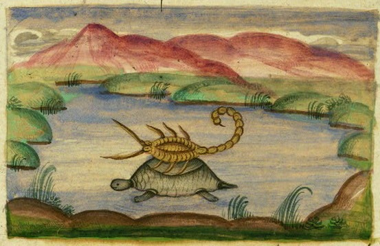 File:Tortoise and Scorpion.jpg