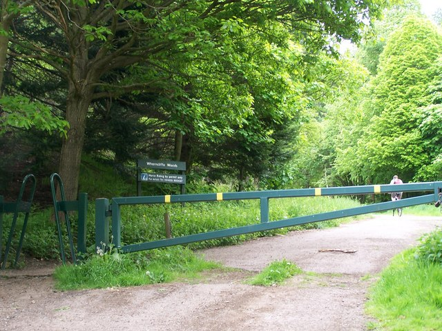 Wharncliffe Woods, Oughtibridge - geograph.org.uk - 840753
