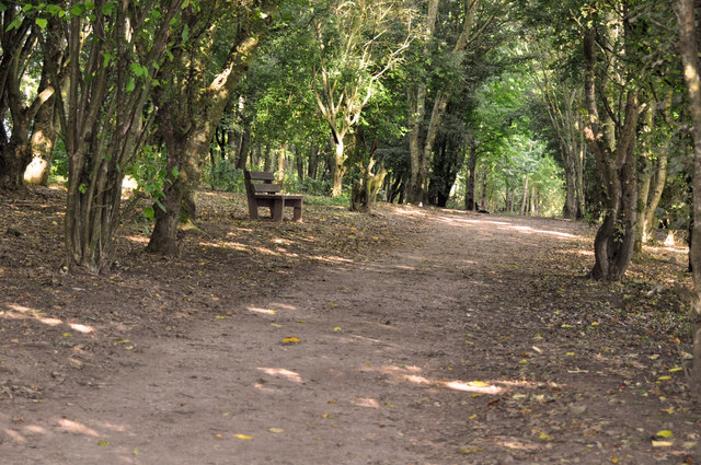 Woodland path - Cosmeston Lakes - geograph.org.uk - 1481232