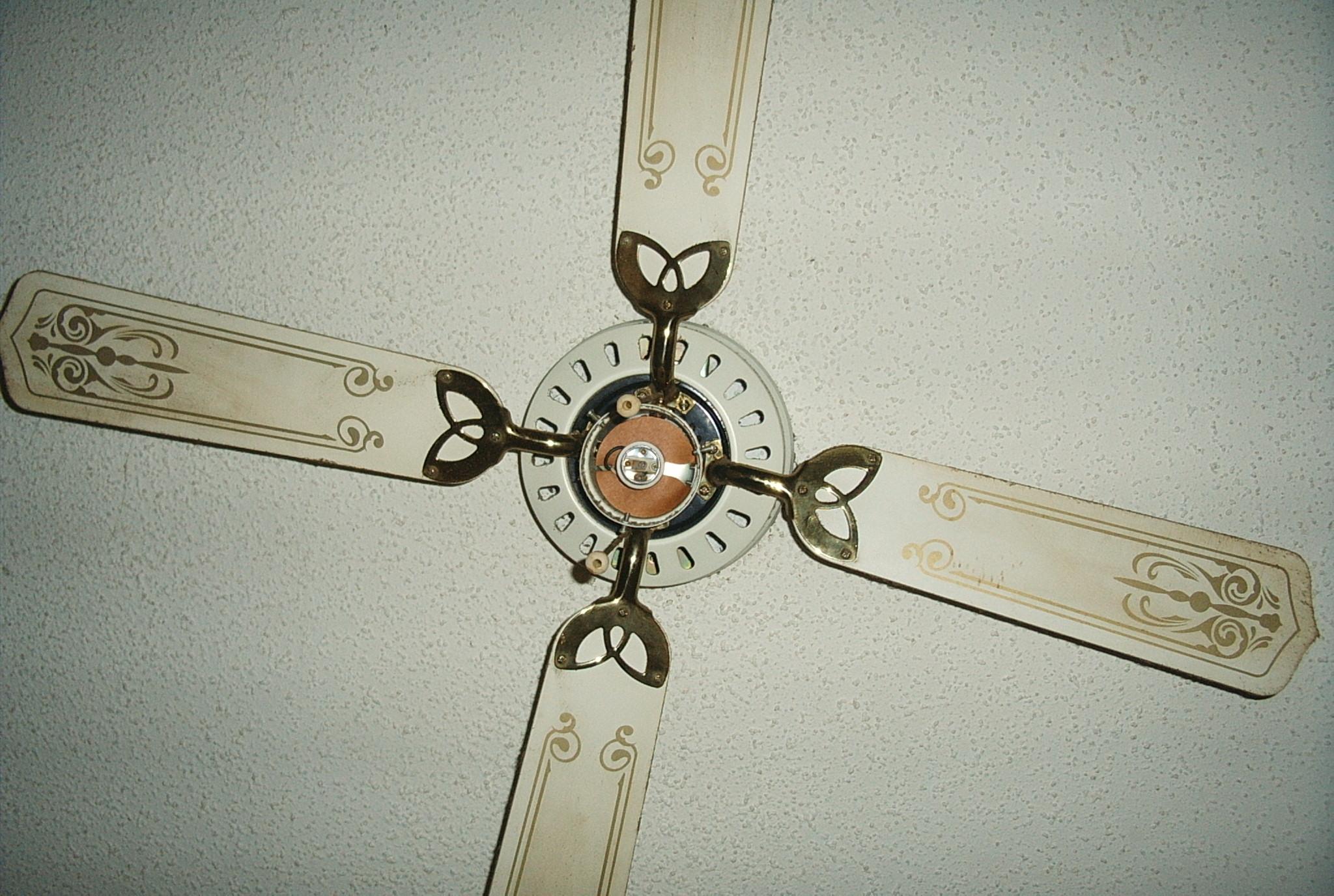 Filea ceiling fang wikimedia commons filea ceiling fang aloadofball Choice Image