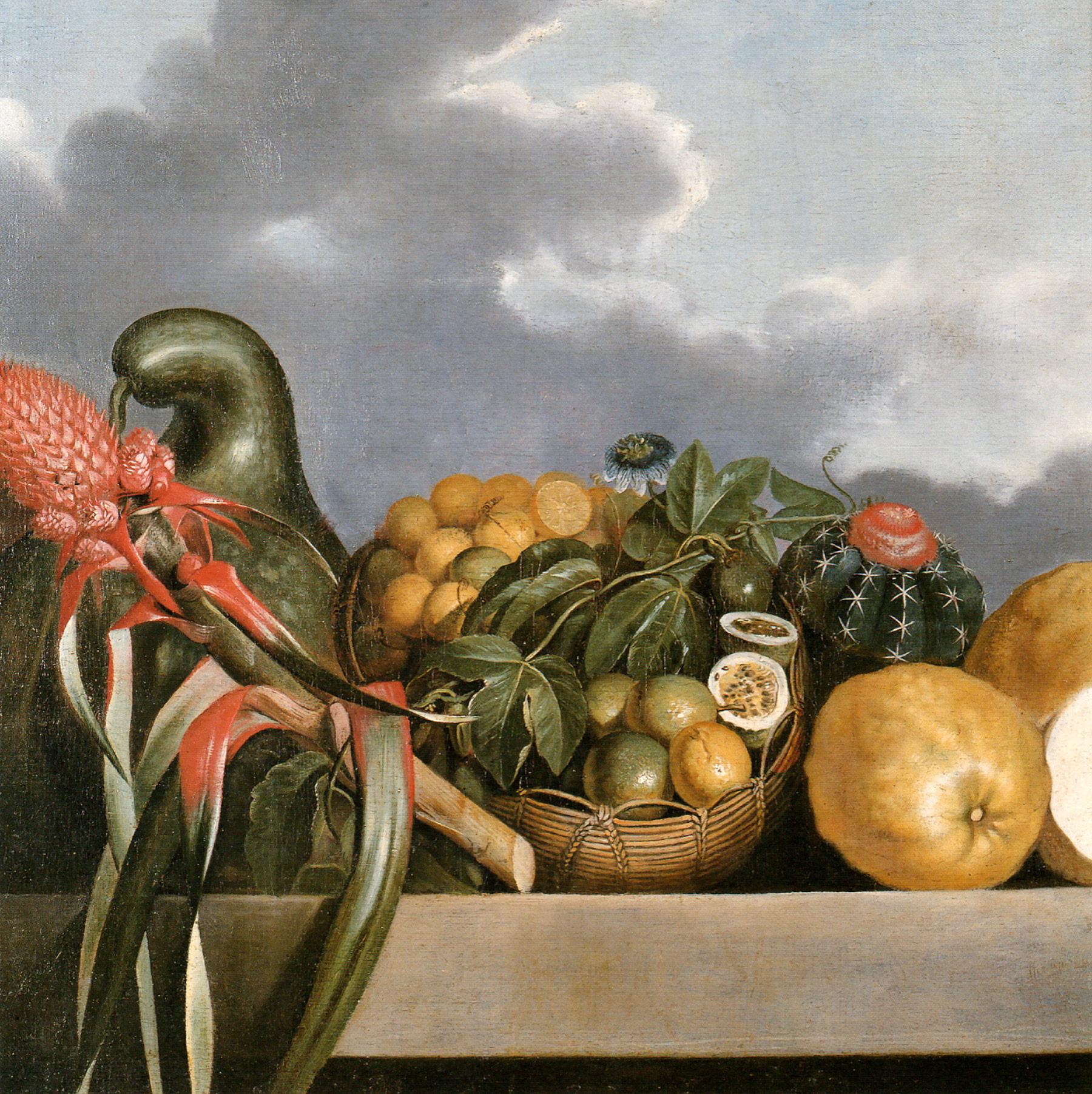 File:Albert Eckhout - Cabaça, Frutas Cítricas e Cacto.jpg