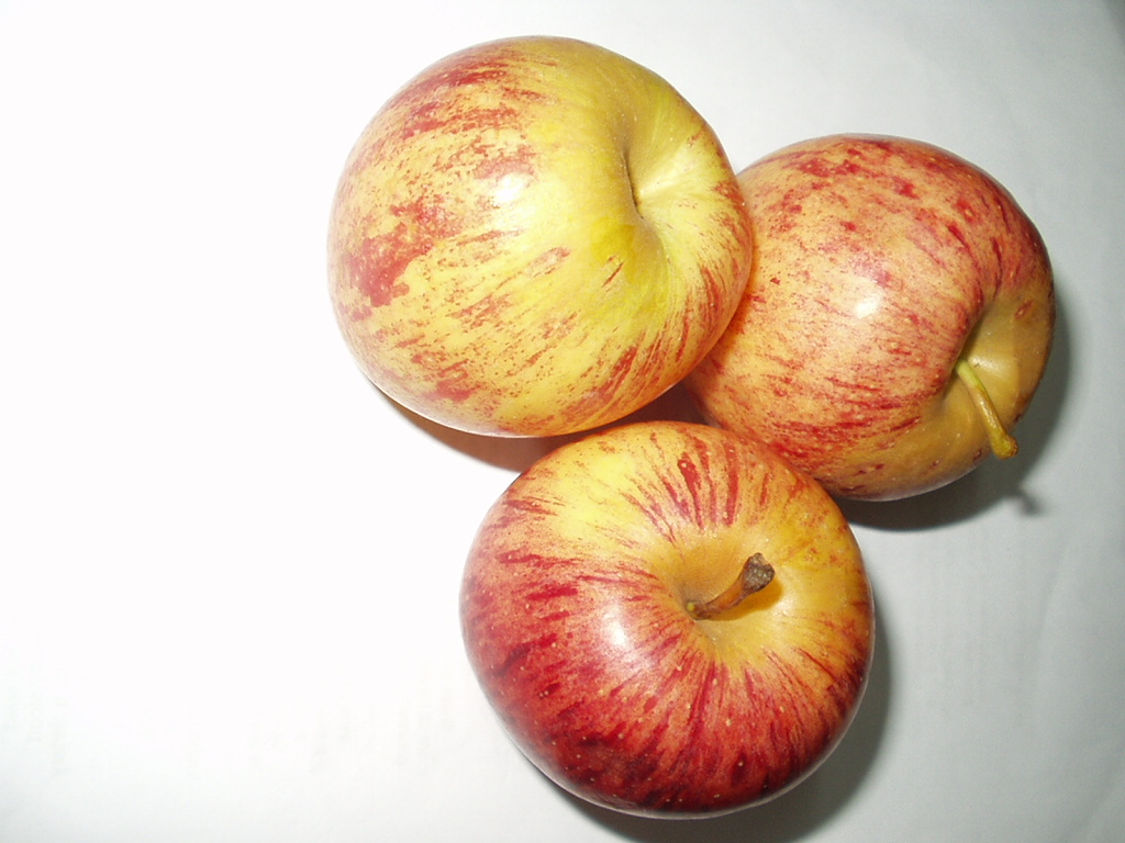 apple fruit  types