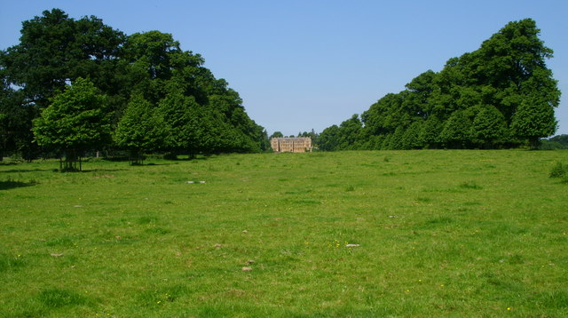 Avenue of trees in front of Montacute House - geograph.org.uk - 1021358
