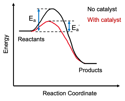 File:Catalyst Energy Diagram.png