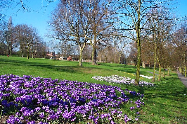 Chaucer Old Park, Ilkeston - geograph.org.uk - 14817