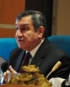 Essam Sharaf Egyptian engineer, politician