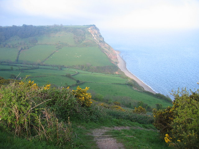 Dunscombe Cliff - geograph.org.uk - 6856