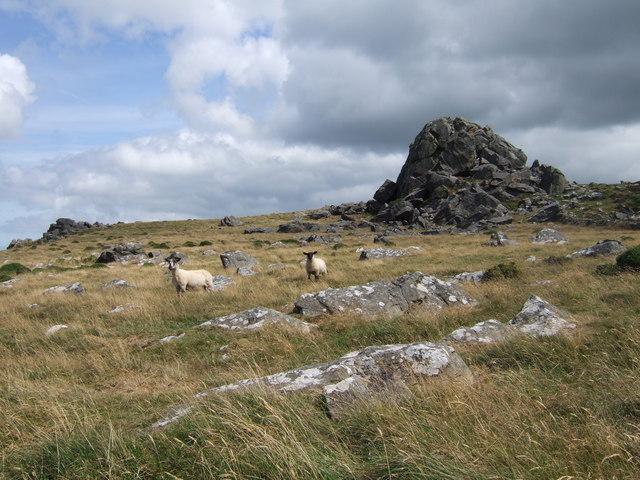 Garn Fawr, Mynydd Dinas - geograph.org.uk - 207544
