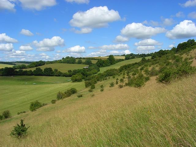 File:Hillside below Bledlow Ridge - geograph.org.uk - 892065.jpg