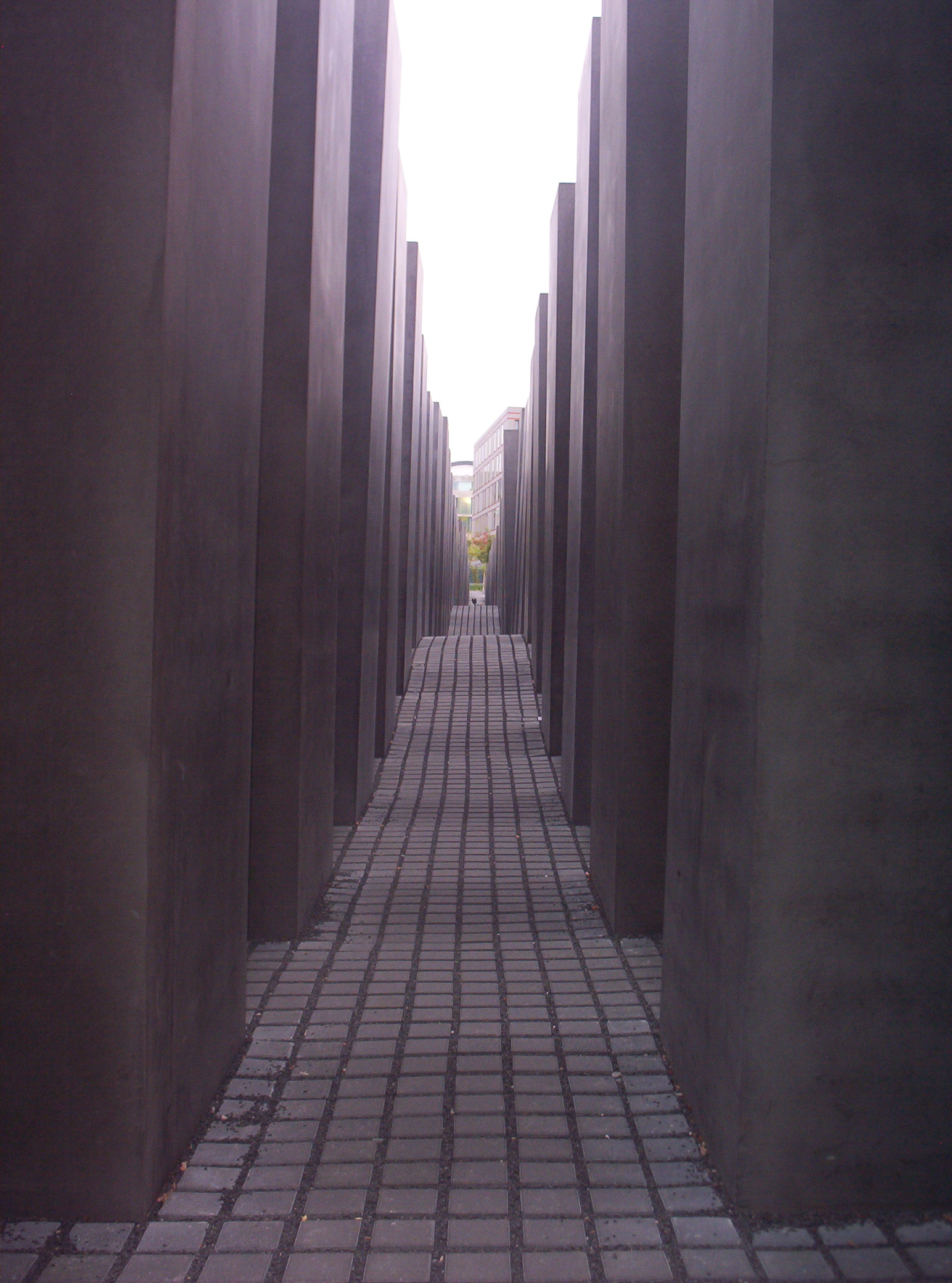 my holocaust museum experience essay Holocaust museum essay the prospect of visiting the holocaust museum was one which offered as much anxiety as holocaust museum experience the holocaust.