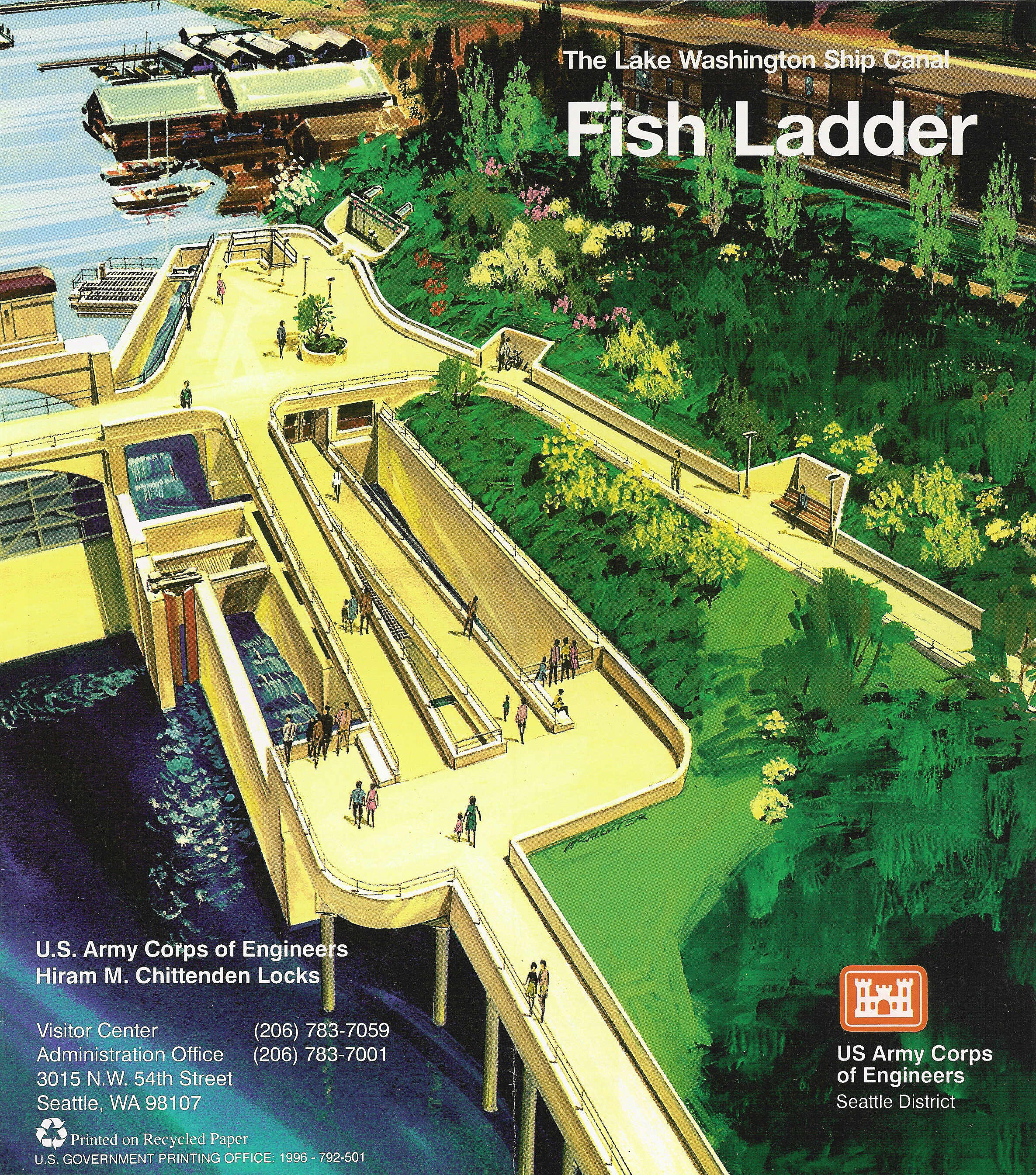 Lake washington ship canal ballard dam locks and fish for Ballard locks fish ladder