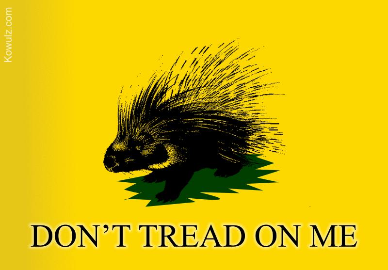filelibertarian porcupine gadsden flag 800png