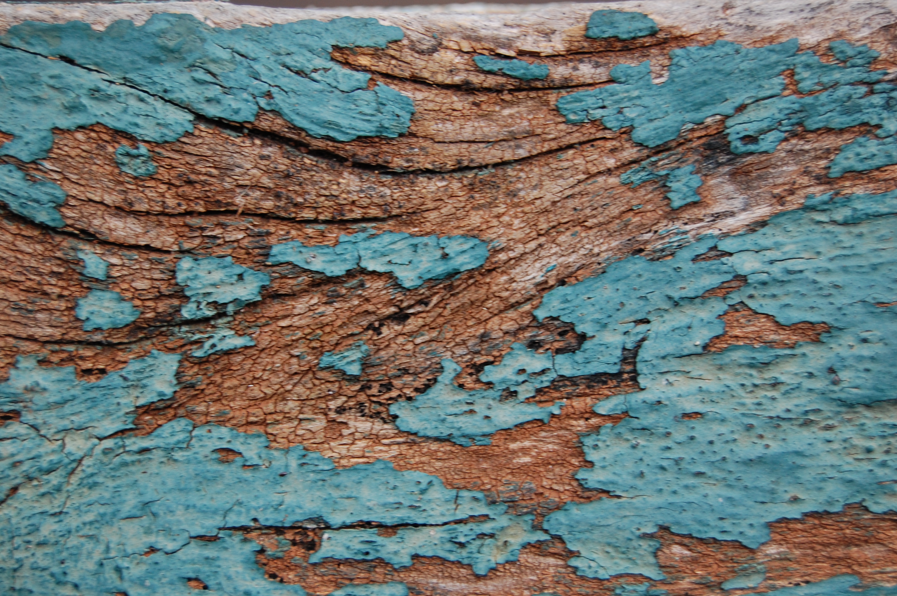 Rustic Teal Wall Paint