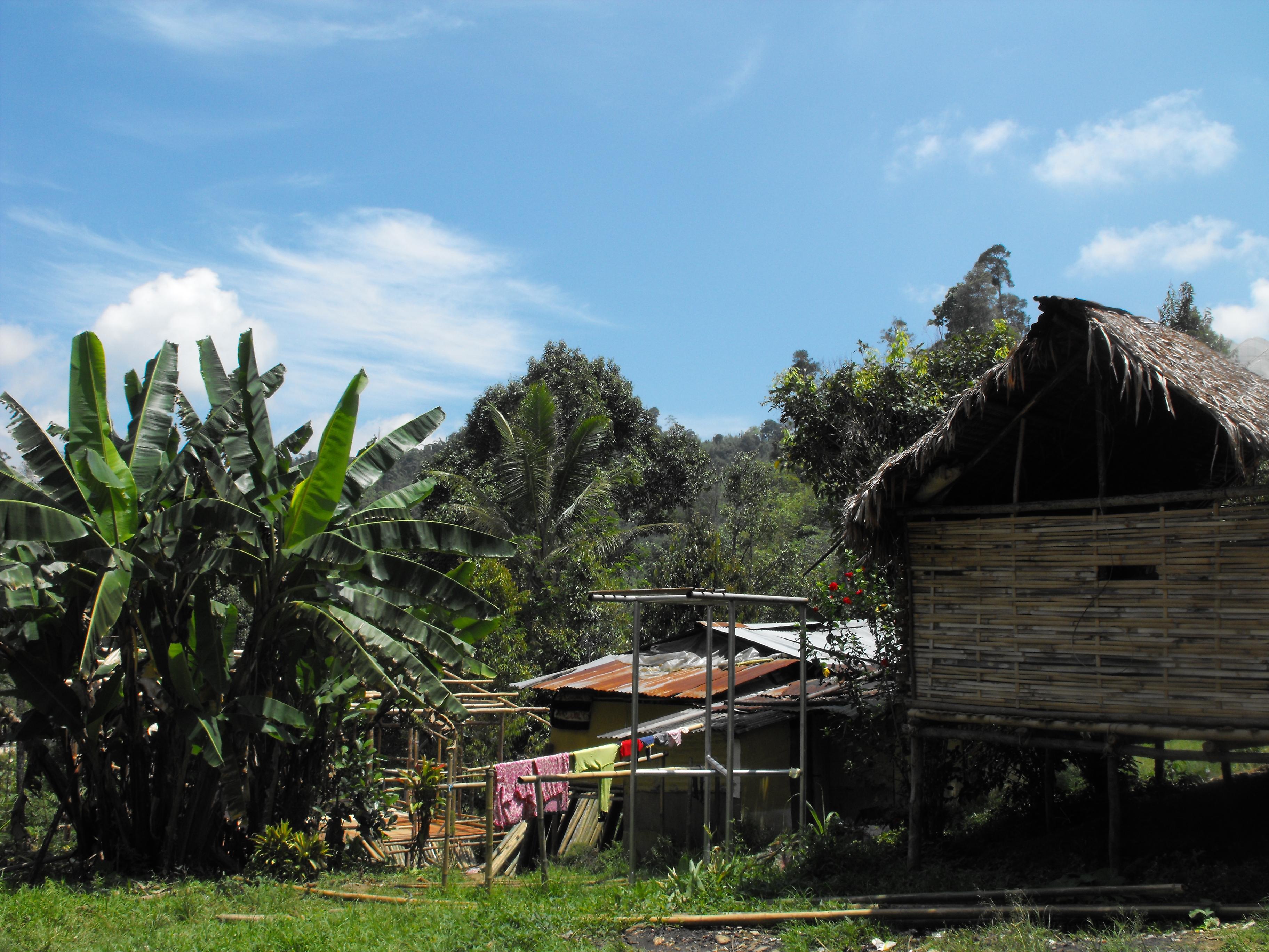 マレーシアの先住民、オランアスリの人々が住む家