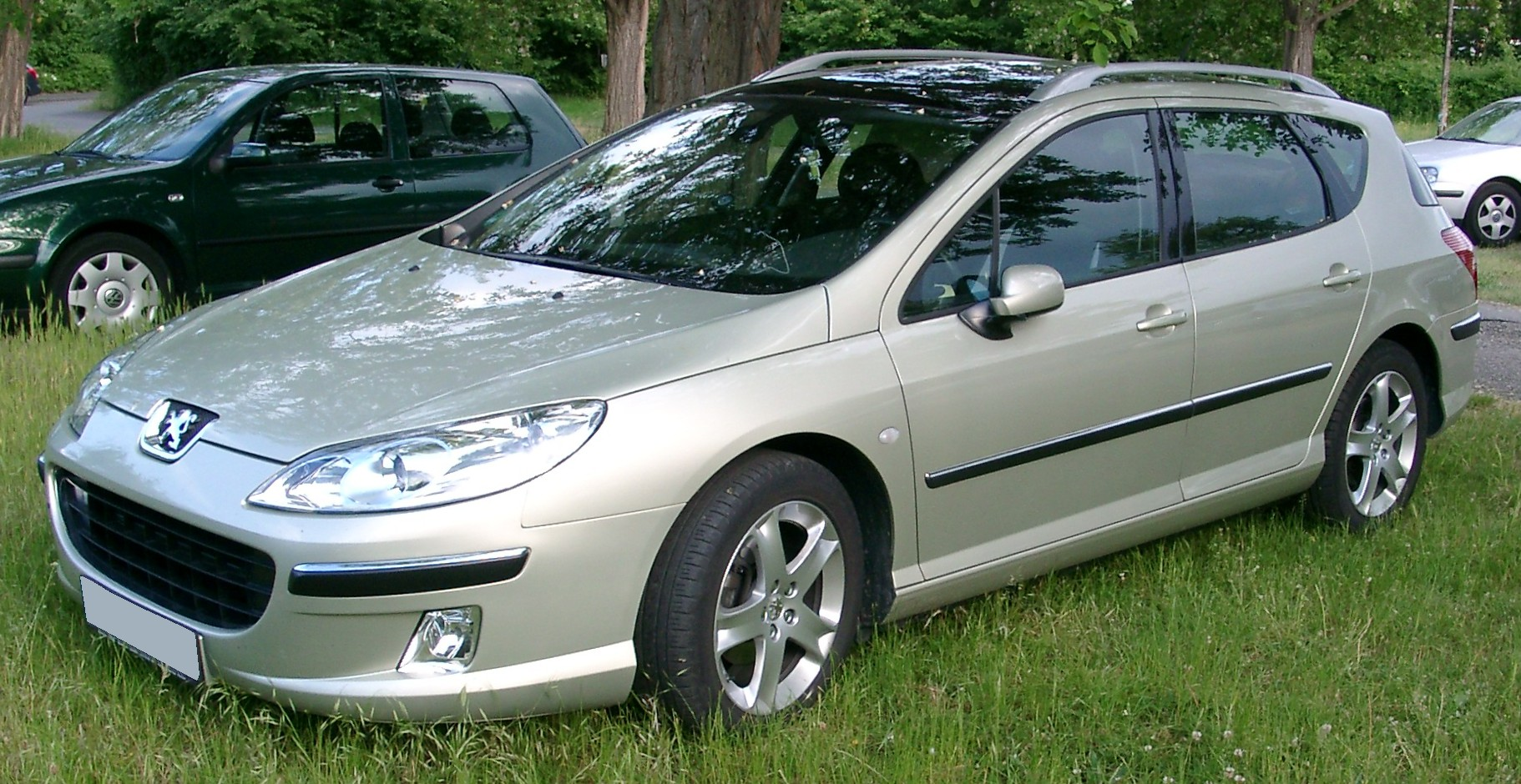Peugeot-407-SW