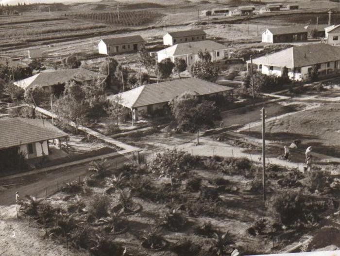 חצר ניר-עם 1950