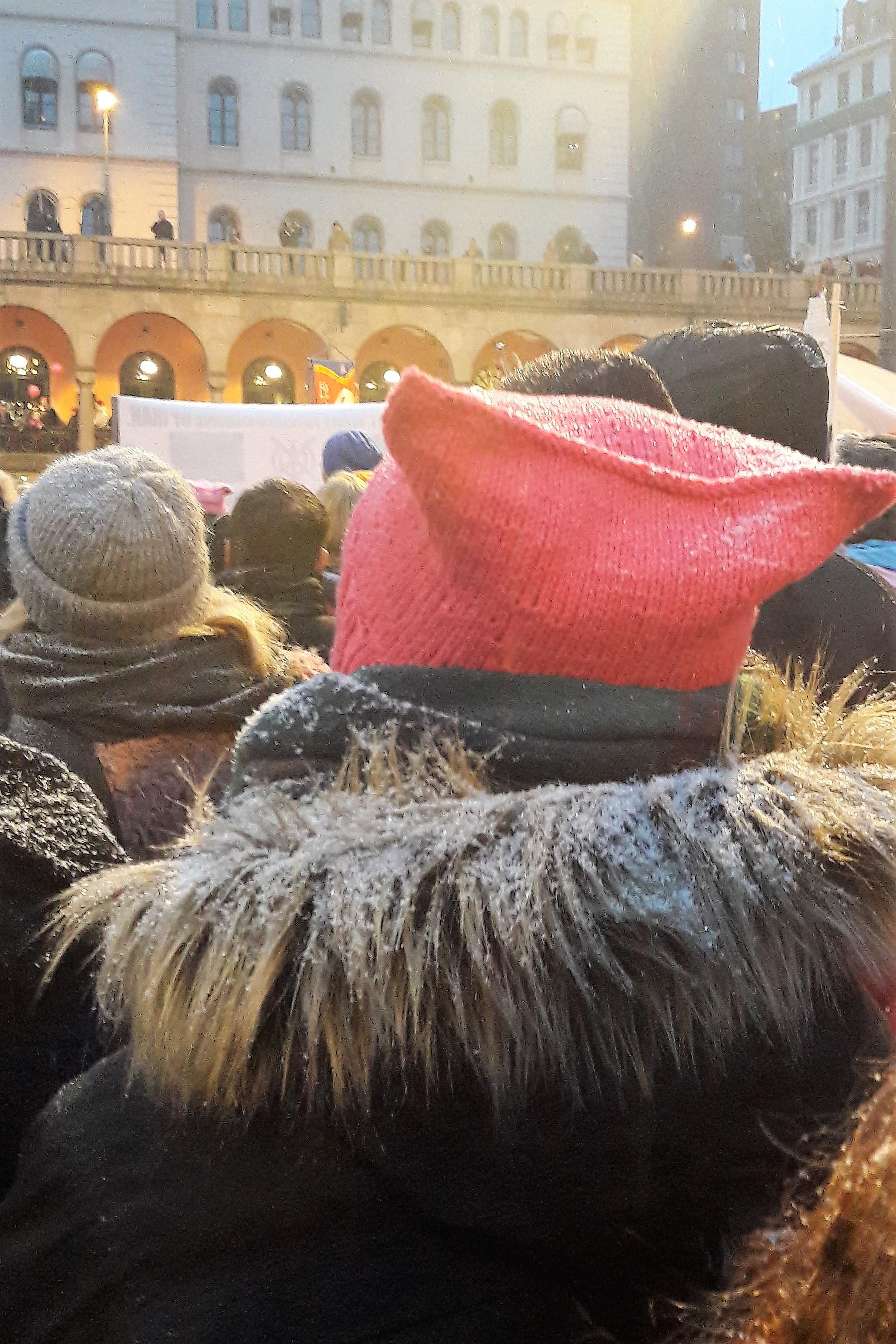 edb4296bb71 File Pussy hat Oslo 2017.jpg. From Wikimedia Commons ...