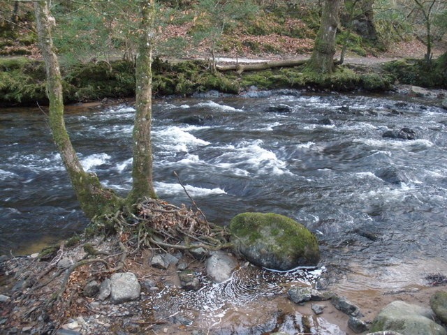 Rapids, on the River Teign - geograph.org.uk - 1095924