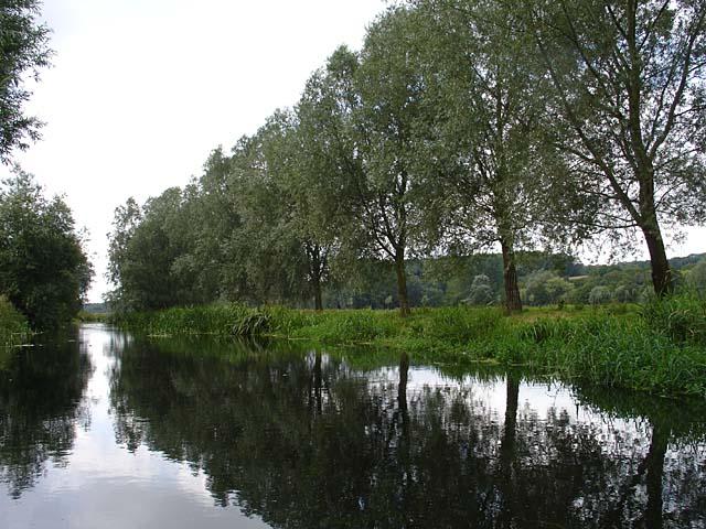 River Waveney near Bath Hills - geograph.org.uk - 221980