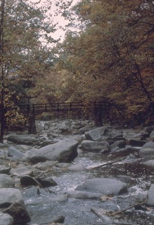 Bestand:Rock-Creek-Park.jpg