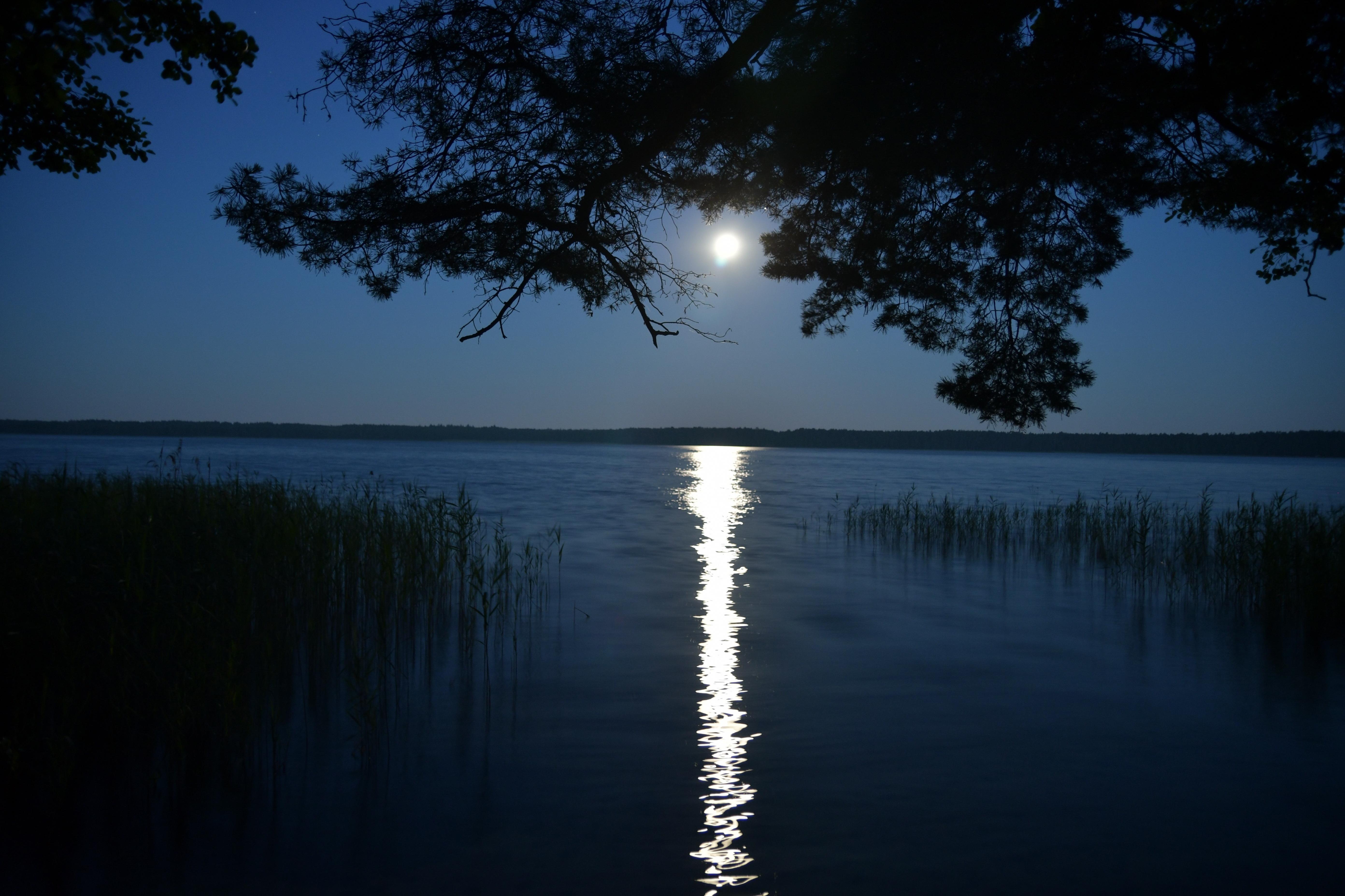 File:Rudka Volodymyretskyi Rivnenska-Rivnenskyi Nature Preserve-Bile lake-night view-3.jpg