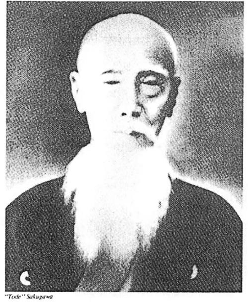 Risultati immagini per Sakugawa Kanga