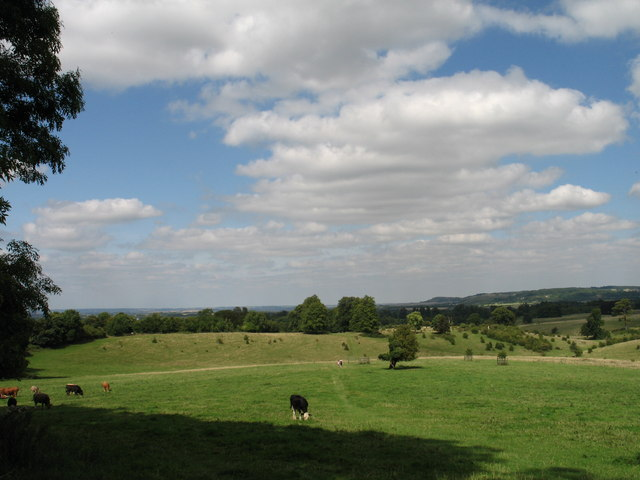 Tring Park - geograph.org.uk - 1480840