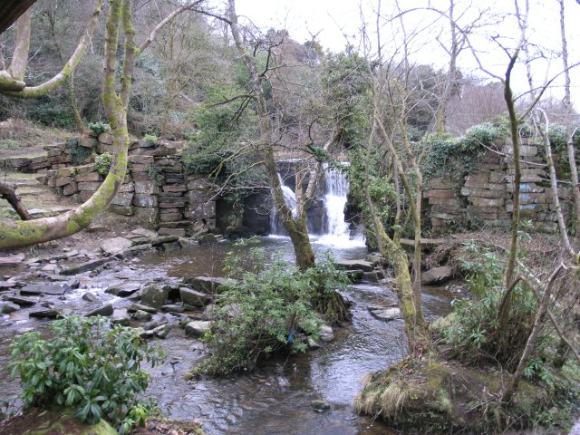 Waterfall in Penllergare Valley Wood - geograph.org.uk - 2219001